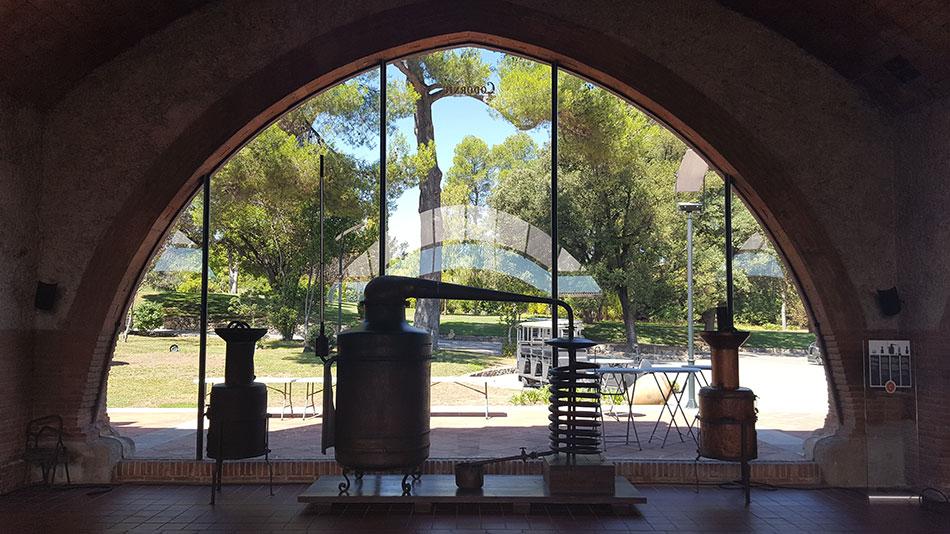 Экскурсия на Гору Монтсеррат и винные погреба (фото 3)