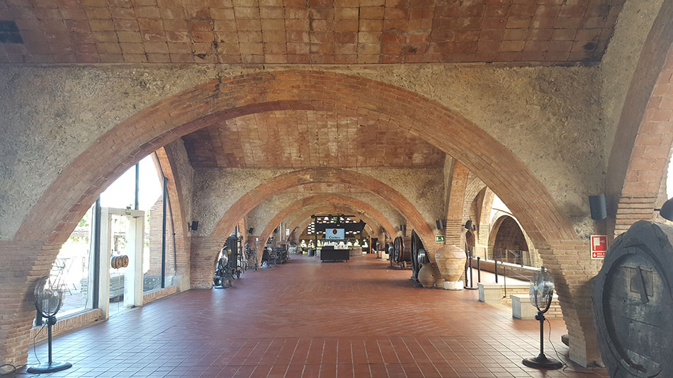 Экскурсия на Гору Монтсеррат и винные погреба (фото 4)