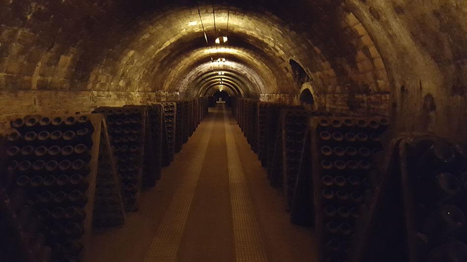 Экскурсия на Гору Монтсеррат и винные погреба (фото 6)
