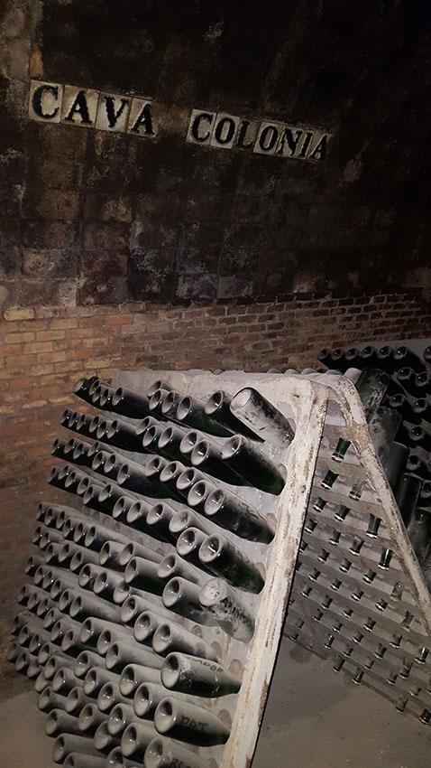 Экскурсия на Гору Монтсеррат и винные погреба (фото 8)