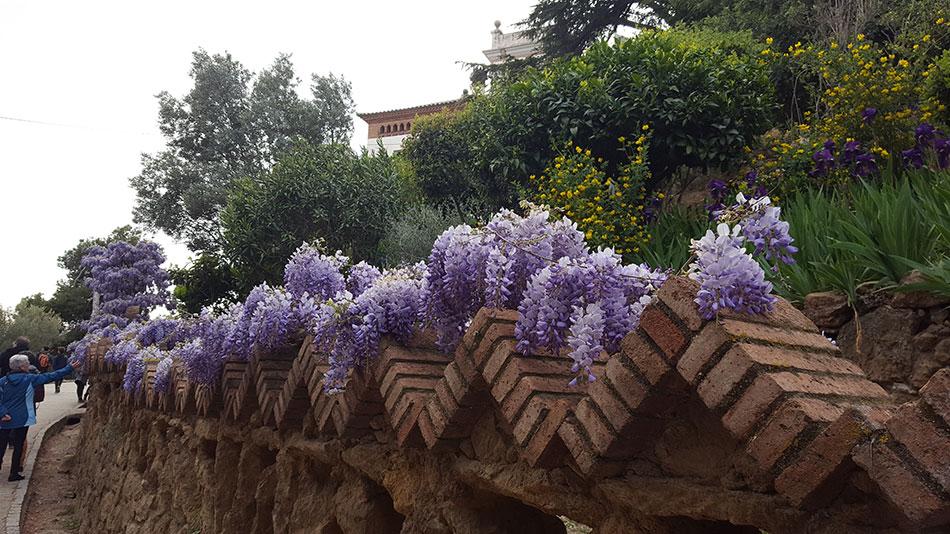 Экскурсия по Барселоне Гауди (фото 16)