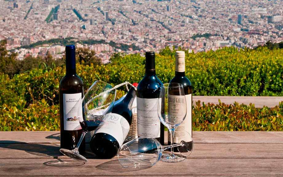 Дегустація вина в Барселоні (фото)