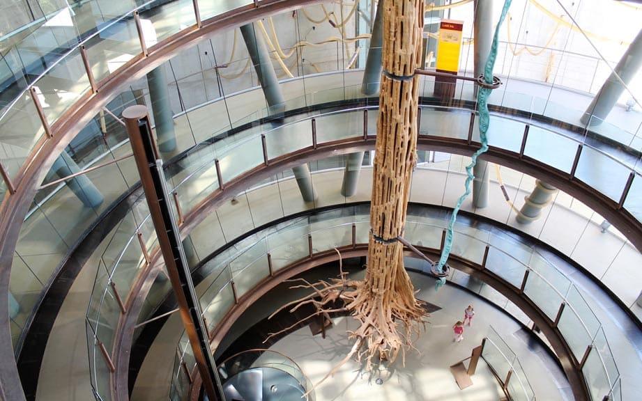 Экскурсии в музей науки CosmoCaixa в Барселоне (фото 2)
